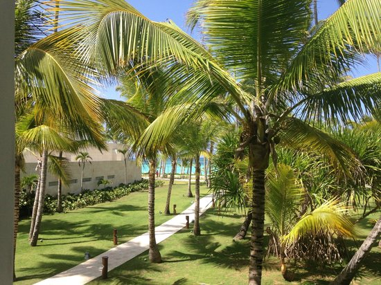 Barcelo Bavaro Beach - Adults Only: View from
