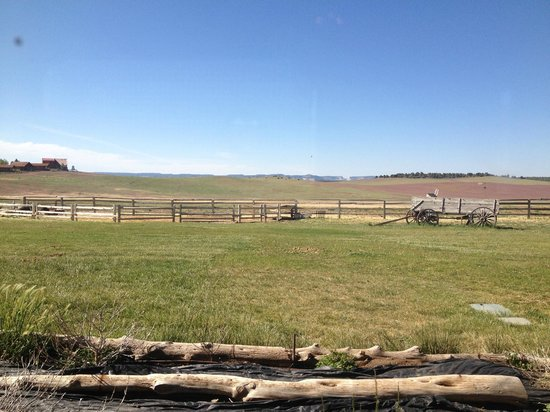 Buffalo Grill: View of the Open range from the restaurant
