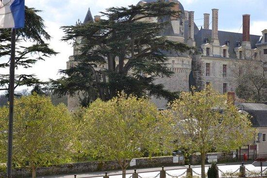 Hotel le Castel : VUE SUR CHÂTEAU DE BRISSAC