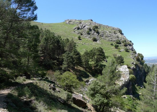 Parque Natural Sierra de Cazorla: Up the hill behinda La Iruela