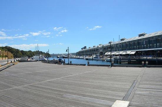 Woolloomooloo Wharf (1)