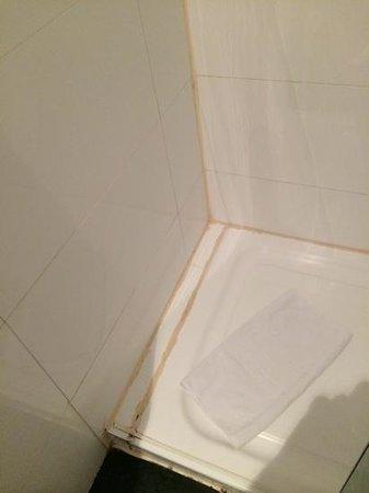 """Petit Palace President Castellana: """"Apaños"""" en las reparaciones del baño"""