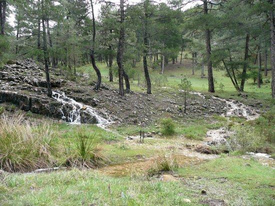 Parque Natural Sierra de Cazorla: Sometimes it rains!