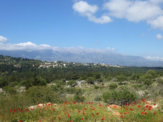 Taverna Paradise Studios & Apartments : in den Bergen von Kreta