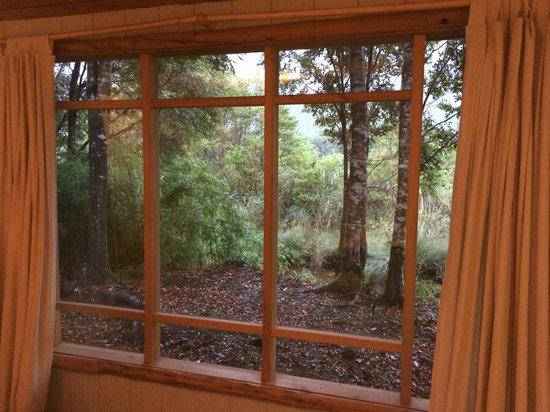 Posada Queulat: Nuestra Vista hacia el bosque y cascadas