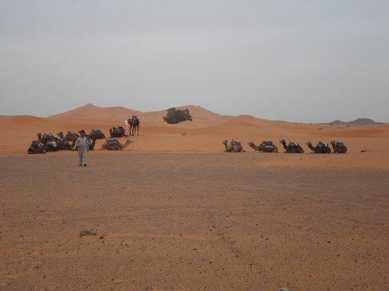 Merzouga Desert: Parking lot