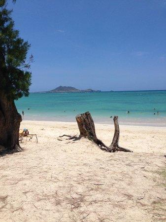 Kailua Beach Park: #1 beach on Oahu