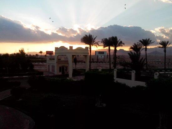 Concorde El Salam Front Hotel: Территория отеля