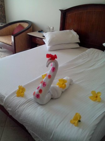Concorde El Salam Hotel: Территория отеля
