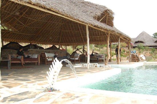 Kiboko Camp: The Swimming Pool