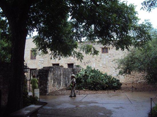 Alamo Plaza: Within the walls.