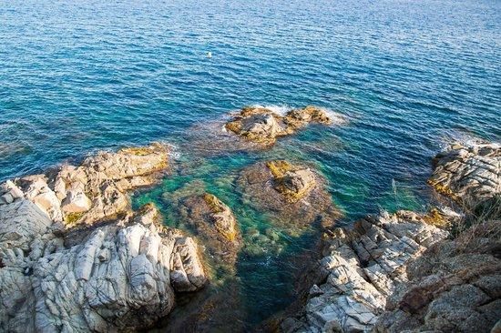 Playa de Lloret: Lloret del Mar