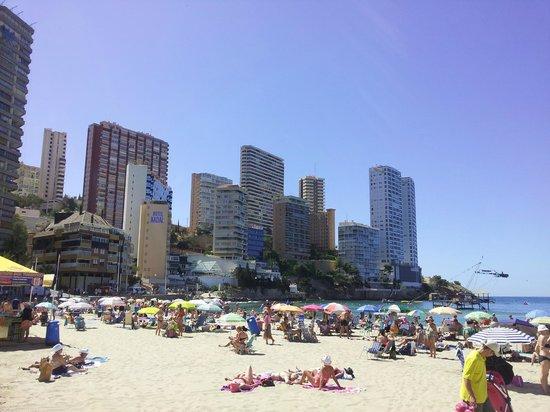 HOTEL PALM BEACH: Playa Levente
