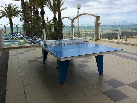Hotel Caprici: теннисный стол на территории