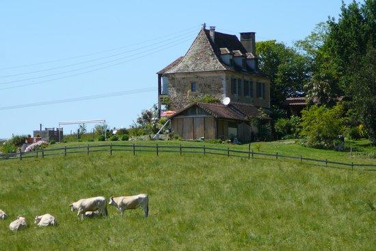Het mooie huis van nadette foto van gite nadette sauvelade