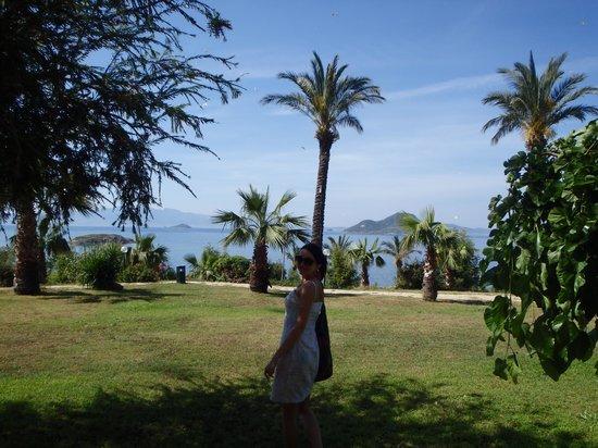Yasmin Resort Bodrum : widok z pokoju