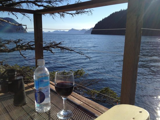 Orca Island Cabins: view from our deck