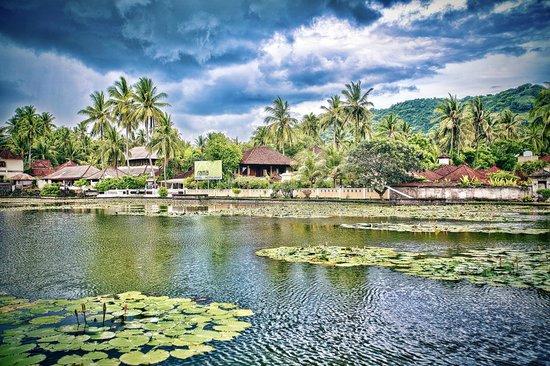Ujung Water Palace - Padangbai - Bali - Indonesia - Wandervibes - pond