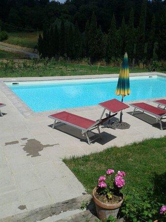 "Agriturismo ""La Topaia"" : Relax in piscina"