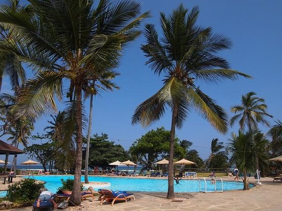 Amani Tiwi Beach Resort: Palm Tree