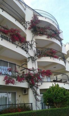 Goldcity Tourism Complex: Balkony w kwiatach