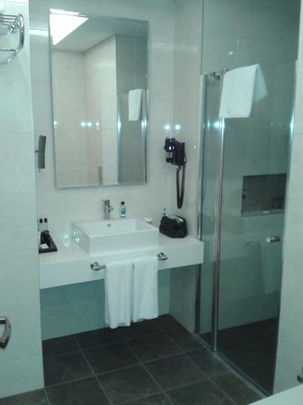 Ramada Plaza Istanbul Asia Airport: Bathroom-shower only