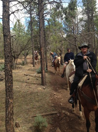 Holiday Inn Express Pinetop: Horse Back Riding in Pinetop