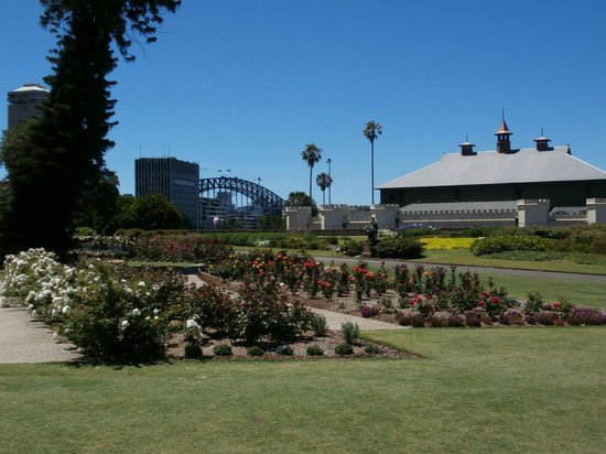 The Opera House to the Botanic Gardens Walk: Gardens1