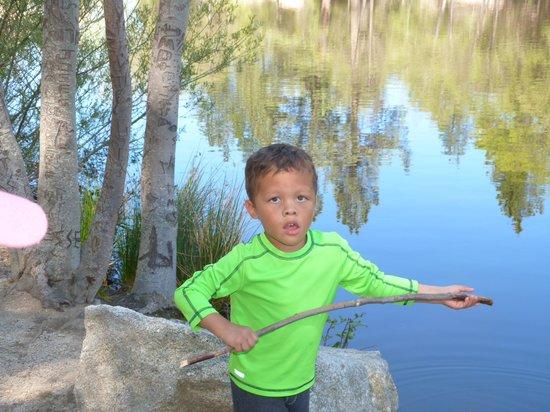 Woodland Park Manor : Kids playing at Lake Fulmore