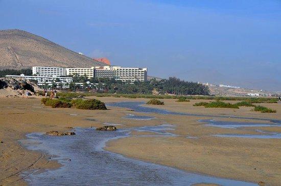 Playa de Sotavento : Bassa marea