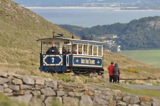 Tram on the Great Orme