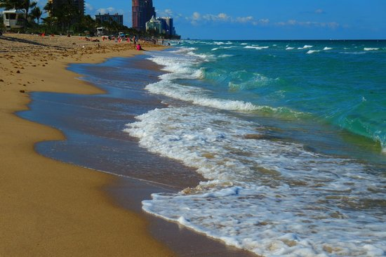 Sonesta Fort Lauderdale Beach: Fort Lauderdale beach