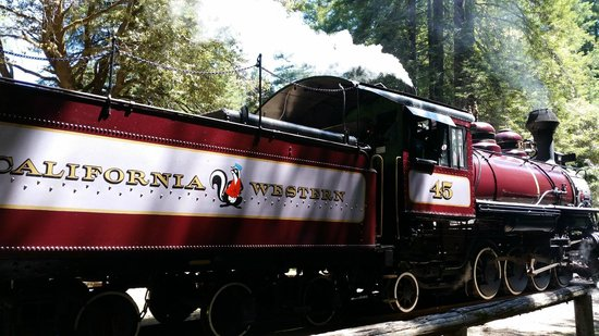 Skunk Train : The Engine