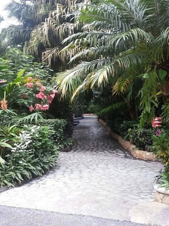 Baldi Hot Springs Hotel Resort & Spa: one of the pathways between the many pools
