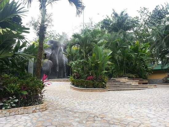 Baldi Hot Springs Hotel Resort & Spa : hotel grounds