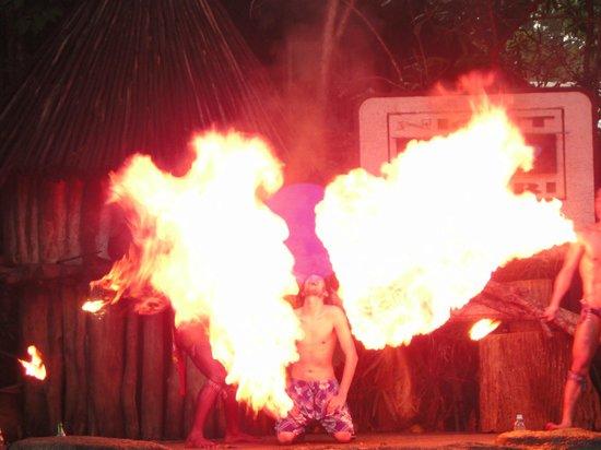 Night Safari: fire show
