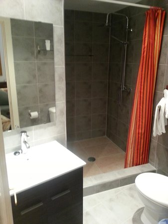 Hostal Regina: Bathroom double room