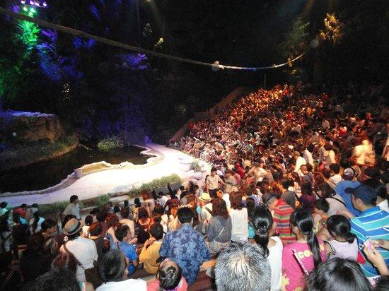 Night Safari: show