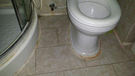 Hotel New-Beach : La salle de bain très salle
