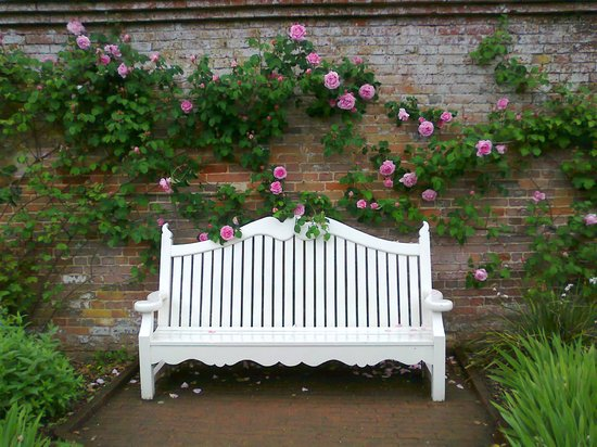 Mottisfont Abbey: Somewhere To Sit Down And Enjoy The Wonderful Sights And  Scents In The