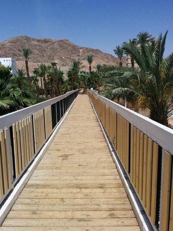 U Coral Beach Club Eilat: Acesso a praia