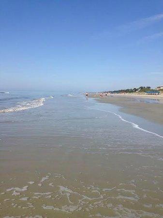 Coligny Beach: Facing South