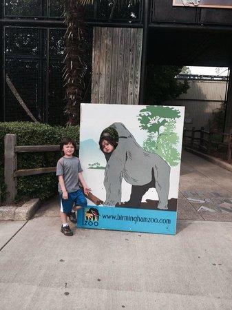 Birmingham Zoo: Animal shots