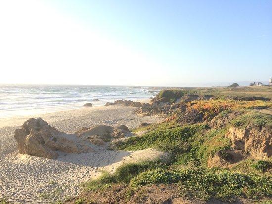 Surf and Sand Lodge: Beach area