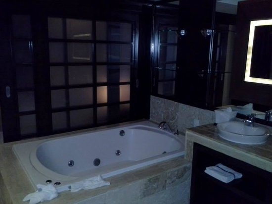 The Reserve at Paradisus Punta Cana: Indoor Jacuzzi View