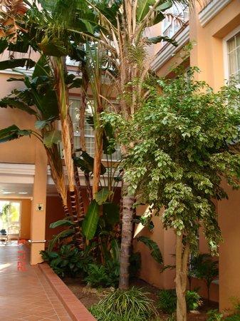 Hotel Barrosa Park: interior de hotel habitaciones