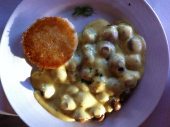 Cafe Coconut Cove: Mushroom Melt $15 Sautéed Mushrooms Melted Cheese, Béarnaise Sauce, Vegetable, Potato Puff.