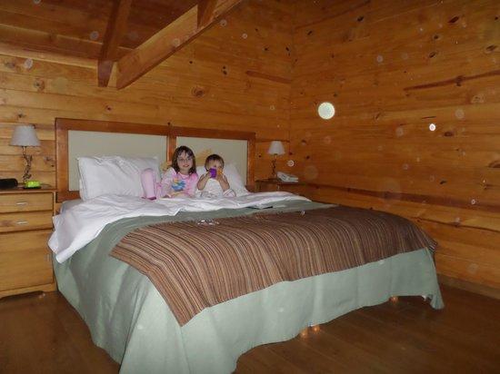 Bosque Dormido Cabañas & Spa : cuarto ppal