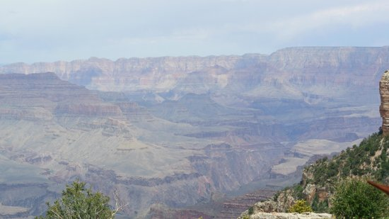 Weight Limit Grand Canyon Tours