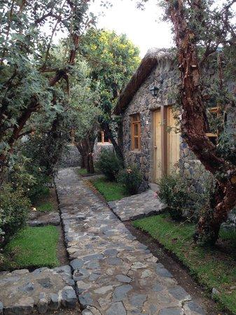 Casa Andina Standard Colca: Casa Andina